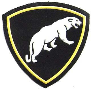 ODON - Separate Special Purpose Division. Sleeve patch. 4x4 inch.