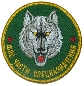 FPS Federal border guard service spetsnaz unit. Unofficial sleeve patch.